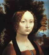 Leonardo  Da Vinci Portrait of Ginerva de'Benci China oil painting reproduction