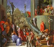 Jacopo Pontormo Joseph in Egypt China oil painting reproduction